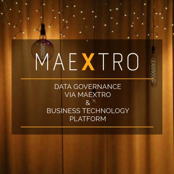 Data Governance via Maextro & Business Technology Platform